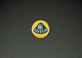 Lotus Logo en fondo de fibra de carbono