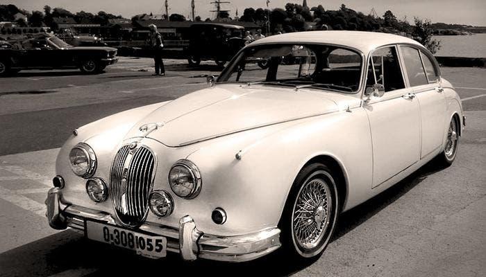 Jaguar en blanco y negro