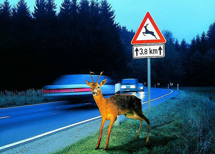Accidentes en la carretera