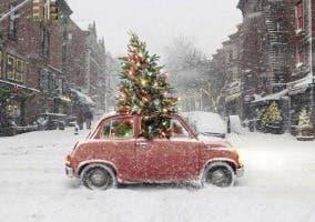 Coche transportando un árbol de navidad