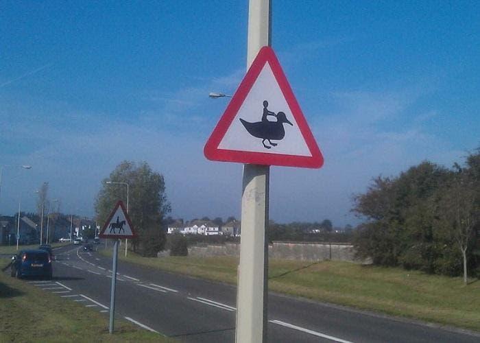 Prohibido montar en pato