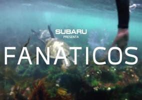 Fanáticos, la nueva campaña del Subaru Outback