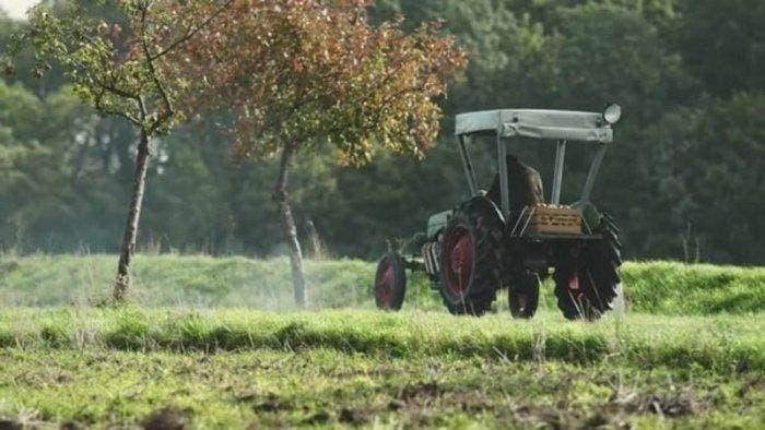 tractor potente back
